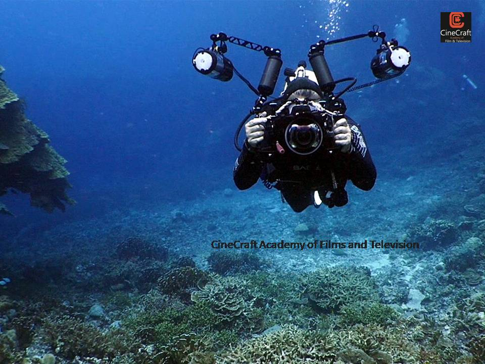 Tips on Under Water Photography